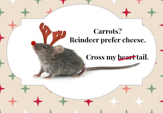 reindeer prefer cheese thrasher termite & pest control