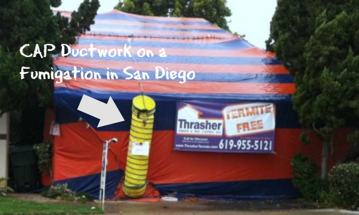 Thrasher Termite Fumigation CAP
