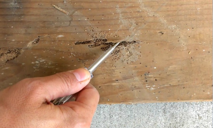 Termite Gallery