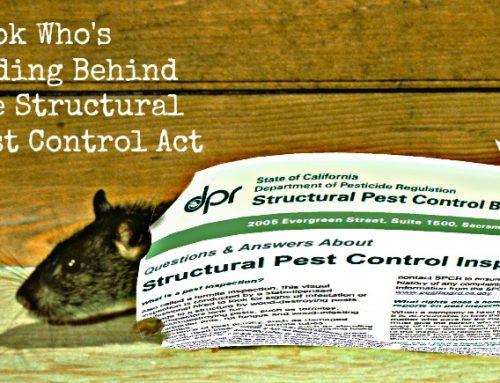 The Surprising Reason Termite Inspectors Never Mention Rat Poop