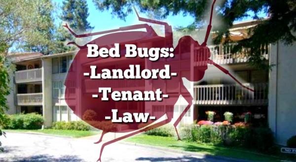 California Bed Bug Law