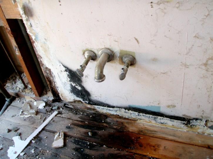 Fungus damage in bathroom.